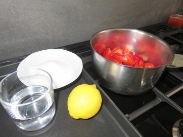 sorbet fraises 21 (1)